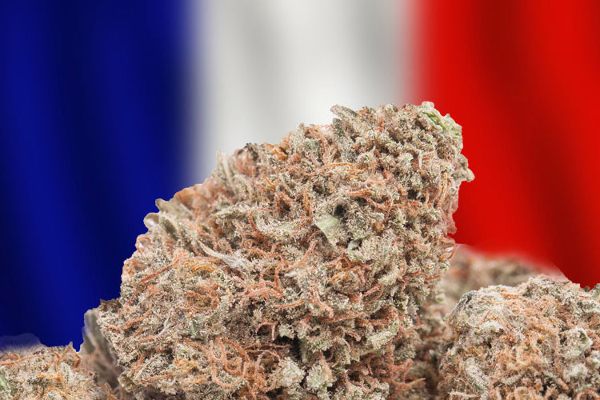 france cannabis2