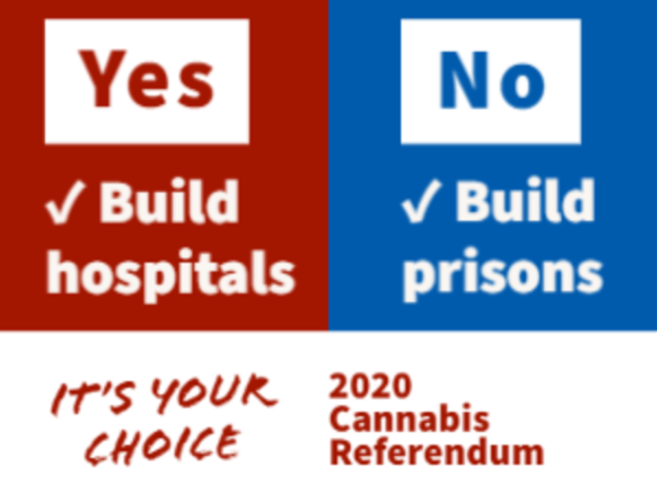 nz referendum hospital prison